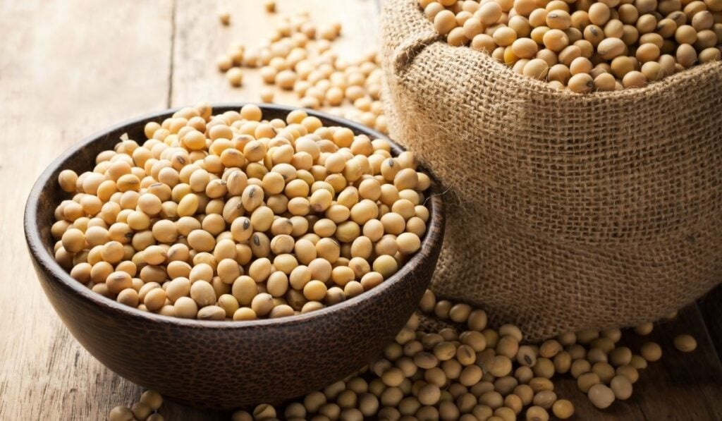 soy beans in a wooden bowl and woven bag