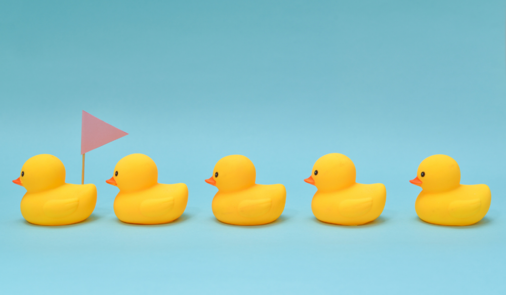 Rubber ducklings following the leader