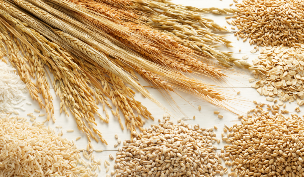 different types of grains on a white table