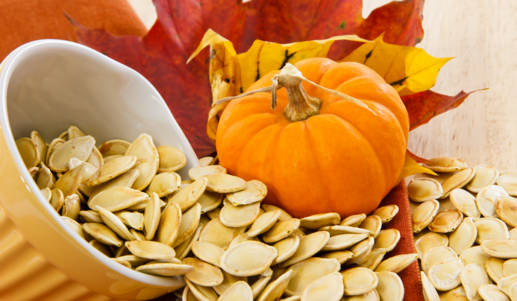 Pumpkin seed on a yellow cup with a cute pumpkin beside it