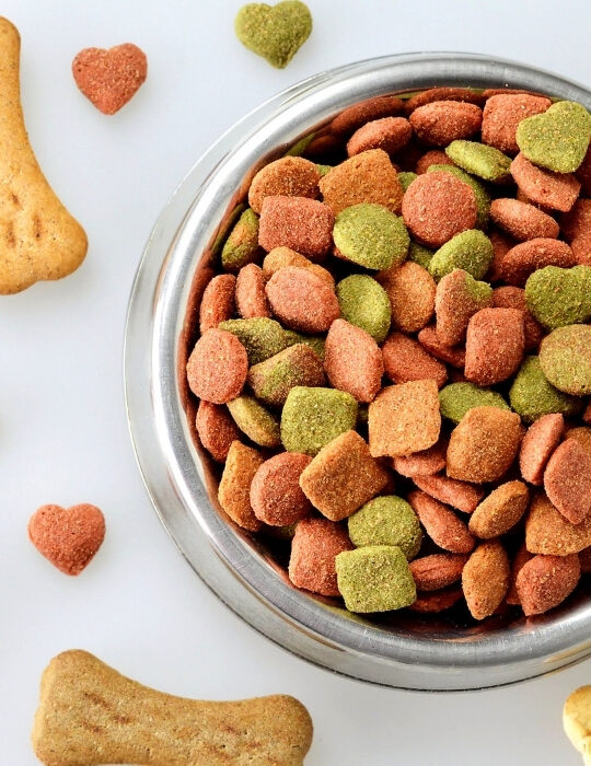 dog-food-in-a-bowl-with-bone-shaped-biscuit